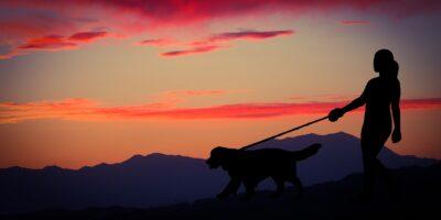 spacer po górach z psem